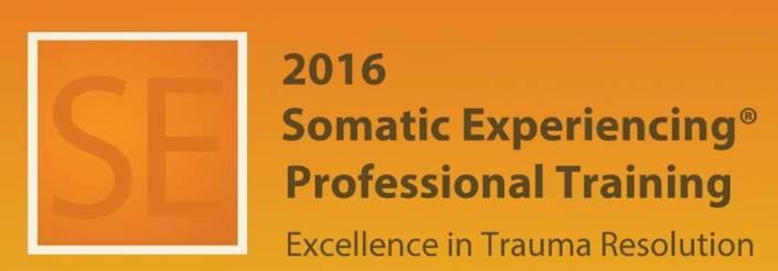 Somatic Experiencing 2016.jpg